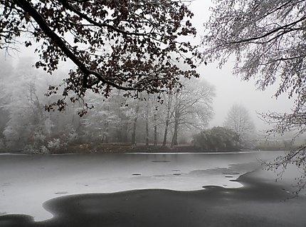 Le parc du Landreau