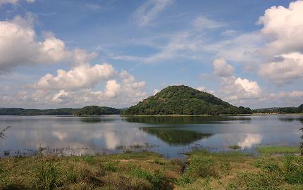 Nature sauvage près de Sigiriya