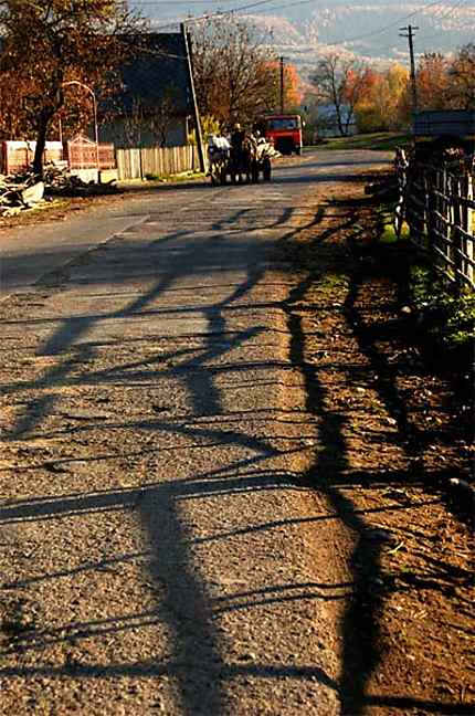 Entre ombre et lumière, Orient et Occident