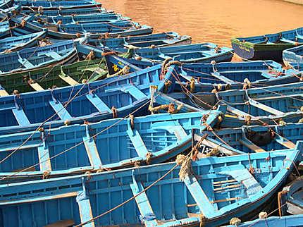 bleu d'essaouira, dans le port