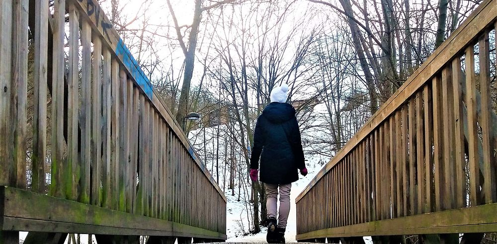 Stockholm et ses parcs en hiver