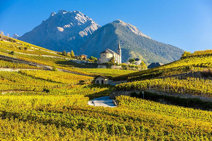 Les vins de Suisse