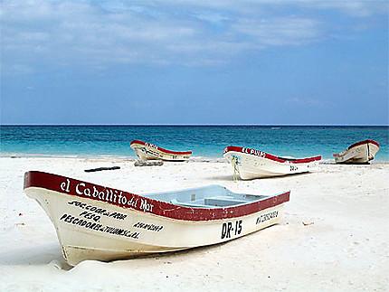Bateaux sur sable blanc