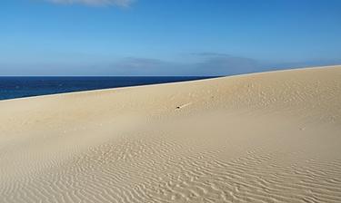 Parc naturel des dunes de Corralejo