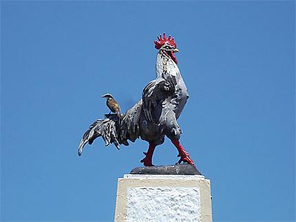 Cayenne, la place du Coq