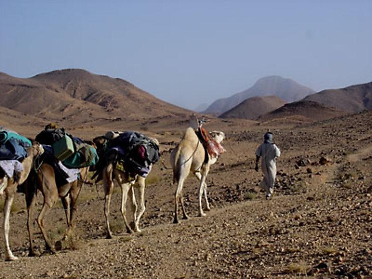 Hoggar, terre nomade