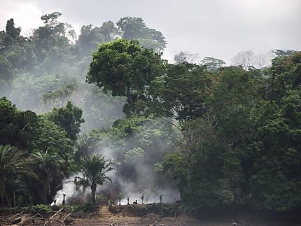 Descente de l'Ogooué