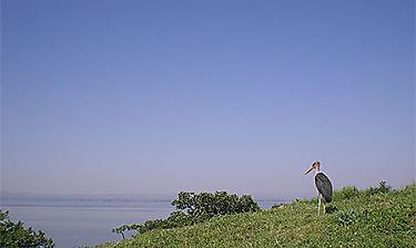 Lacs de la vallée du Rift