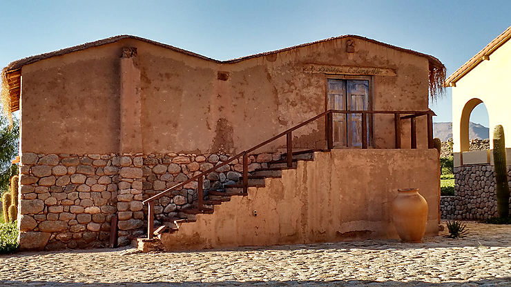 Cafayate / Bodega Colomé, province de Salta