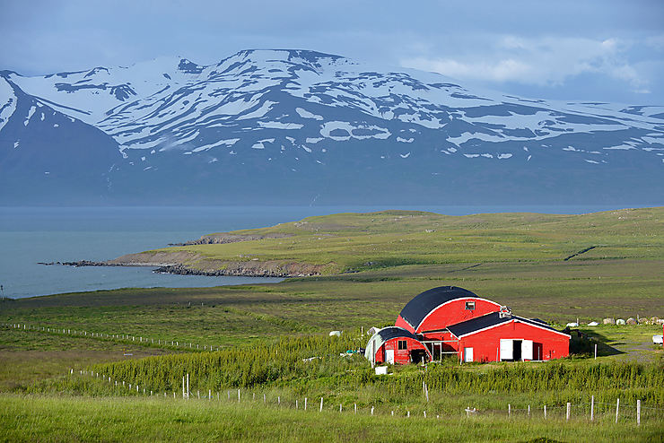 De fjord en fjord