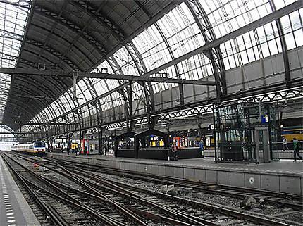 Centraal Station : la grande halle