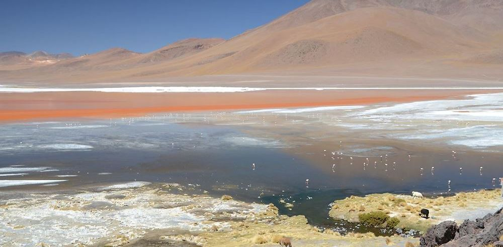 Bolivie : au cœur des Andes