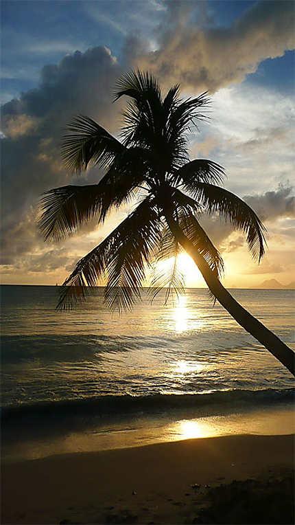 Coucher de soleil Salines