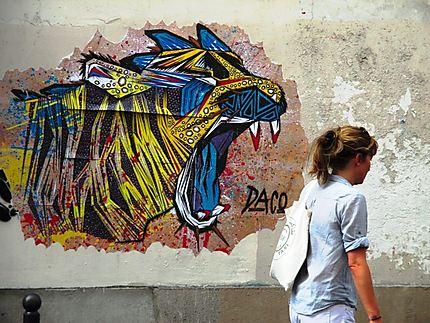 L'art street de Daco