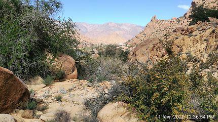 Colline sur les hauteurs de Tafraoute