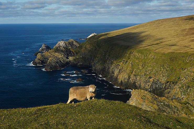 Les archipels écossais : Hébrides, Orcades, Shetland (Ecosse)