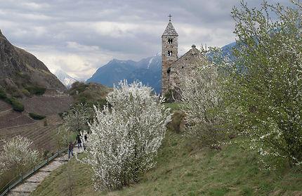Vue de Sion au printemps
