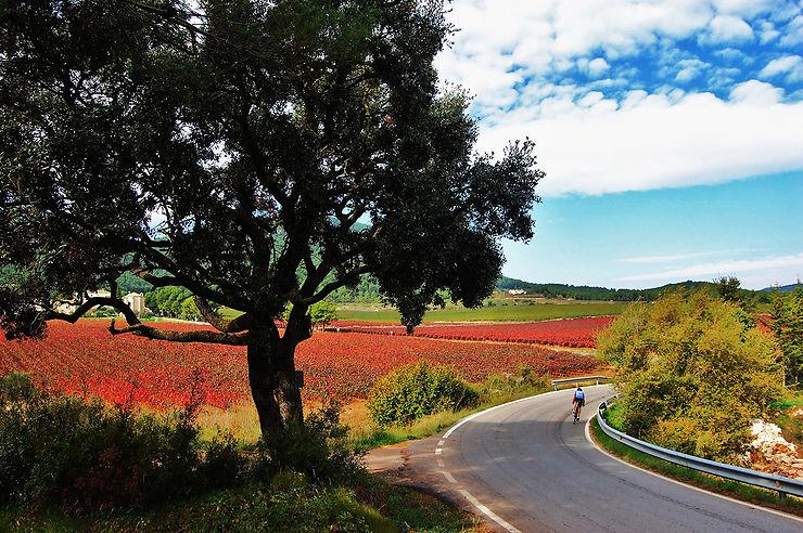 Les itinéraires de cyclotourisme sur route de Catalogne