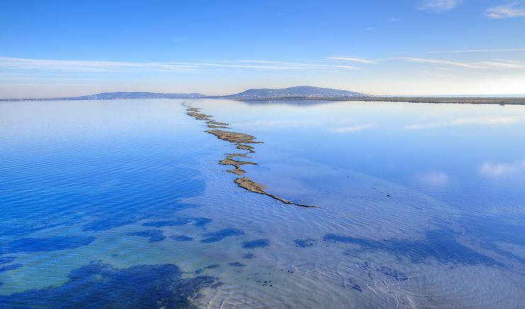 L'archipel de Thau, trésor méditerranéen