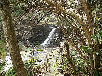 Cascade en Dominique