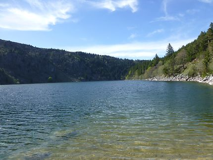 Lac sauvage à Orbey