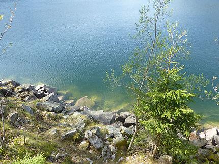 Vert et bleu en bord de lac, Alsace