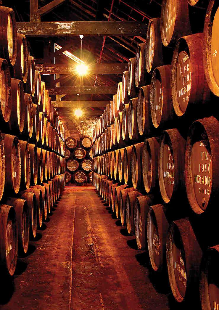 Portugal, à la découverte des vins de Porto