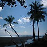 Côté Caraïbes