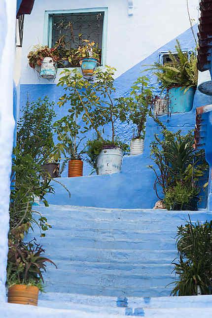 Petit coin de jardin, en haut de l'escalier