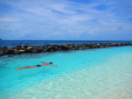 Etoile humaine aux Maldives