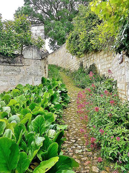 Ruelles de Montsoreau