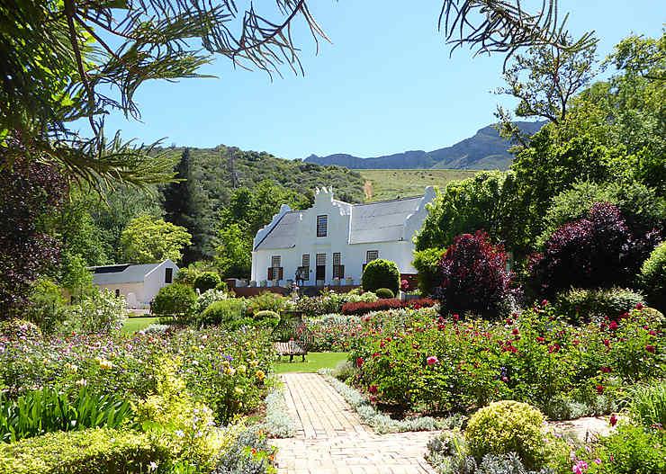 Province du Cap : l'Afrique du Sud, côté jardin