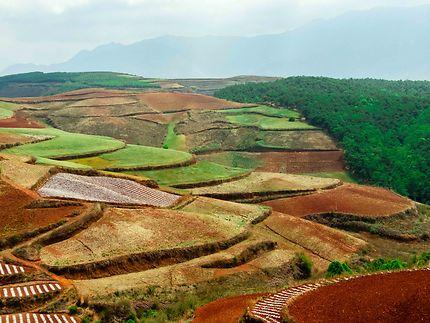 Les terres rouges de Dongchuan Yunnan