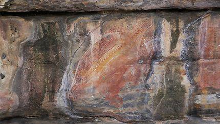 Peinture rupestre à Kakadu