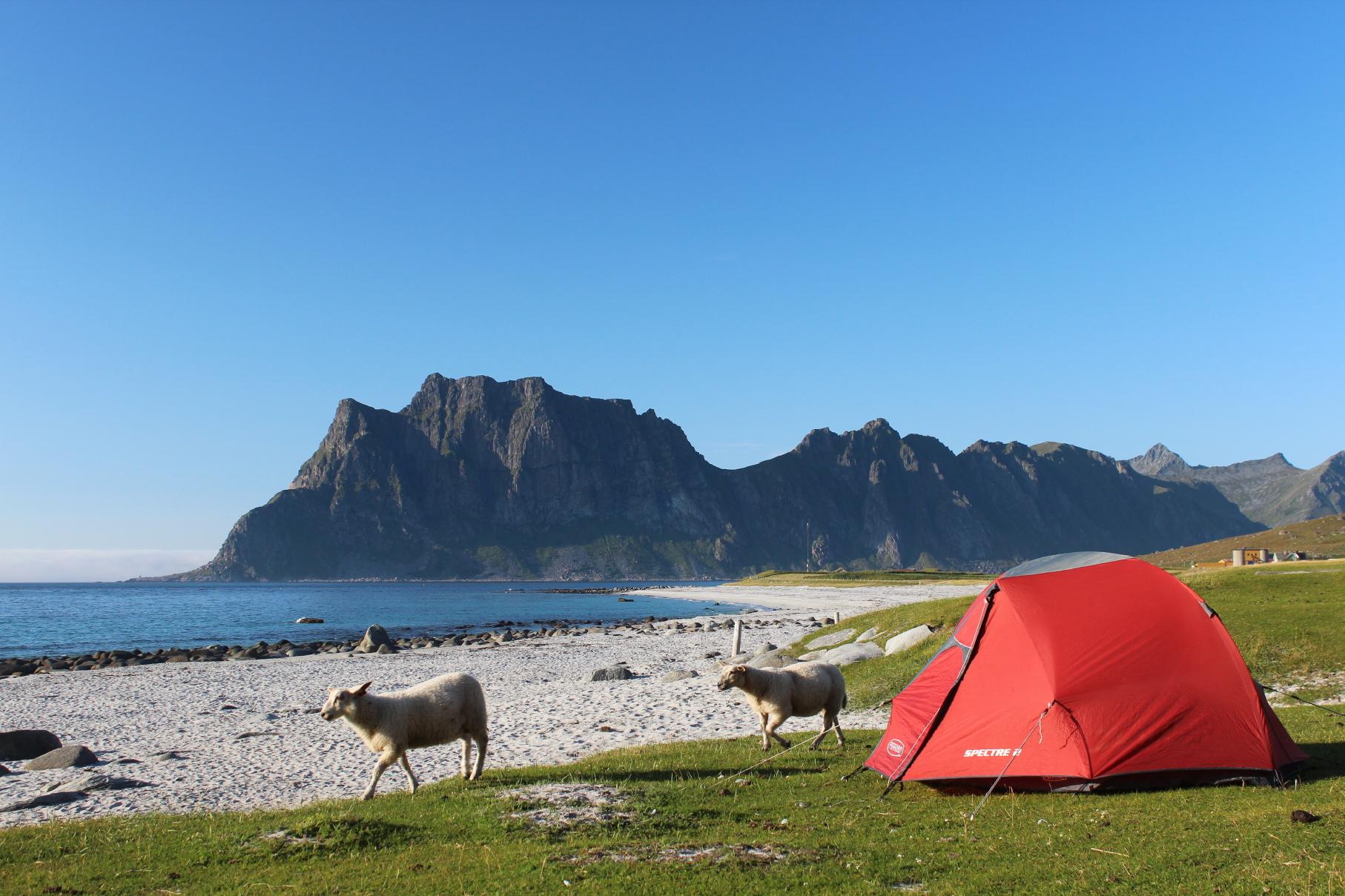 camping uttakleiv plages mer uttakleiv le de vestv g y les lofoten et vester len. Black Bedroom Furniture Sets. Home Design Ideas