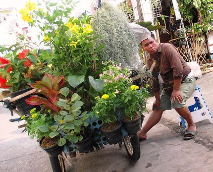 Commerce ambulant de fleurs à Pattaya