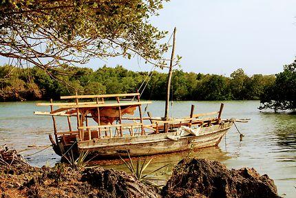 Vieux gréement de bois, Île de Wasini