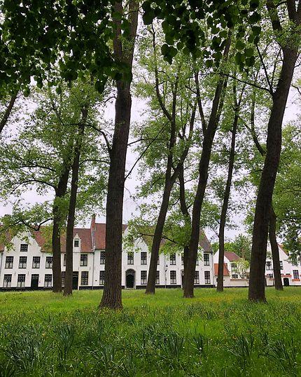 Au cœur du béguinage d'Amsterdam (Begijnhof)