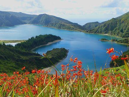 Beauté des Açores