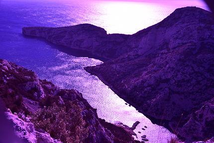 Calanques en violet