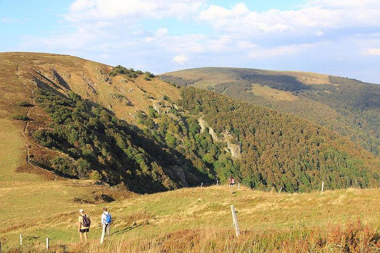 Hautes-Vosges, un grand bol d'air pur