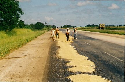 Autoroute du riz, Cienfuegos, Cuba