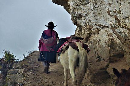 La doña qui vivait seule dans les montagnes