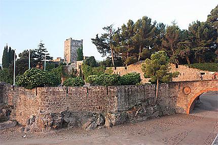 Château de Mandelieu