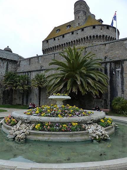 Des palmiers à Saint Malo