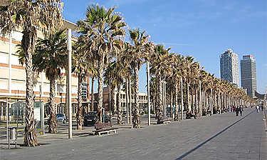 La Barceloneta, les plages et le port