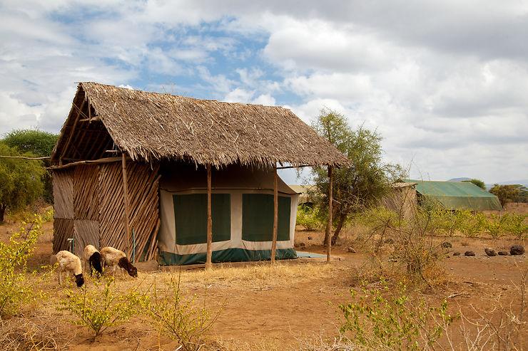 Safari au Kenya : mode d'emploi