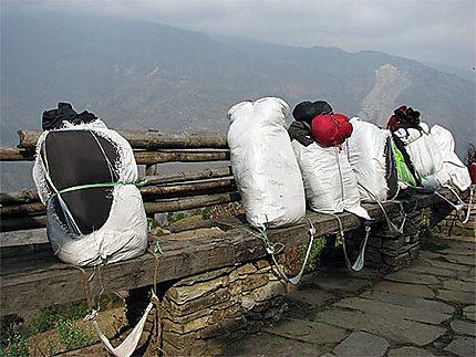 Trek Du L'annapurna Sur Le Sacs Porteurs Sanctuaire De ON8wkXnP0
