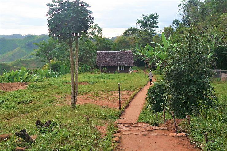 La réserve de Vohimana, temple de la biodiversité