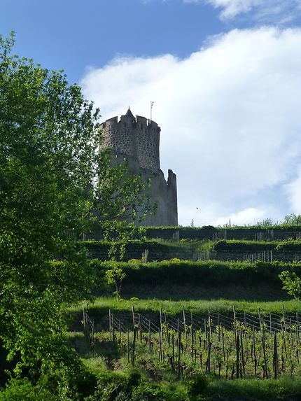 Tourelle et vignes à Kaysersberg